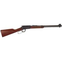 .22 WMR Gun