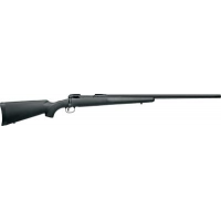.223 Remington Gun