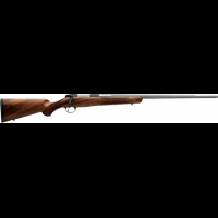 .22-250 Remington Gun