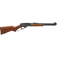 .30-30 Winchester Gun