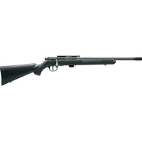 .22LR Gun