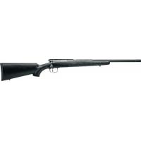 .17 WSM Gun